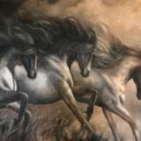Wild Horses (study)